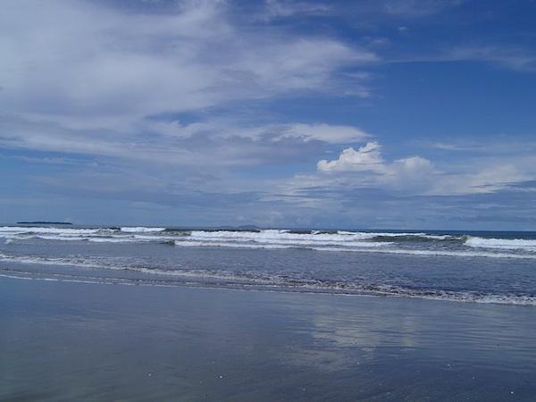 mellow ocean