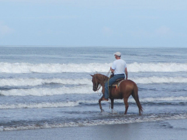 beach ride man sea