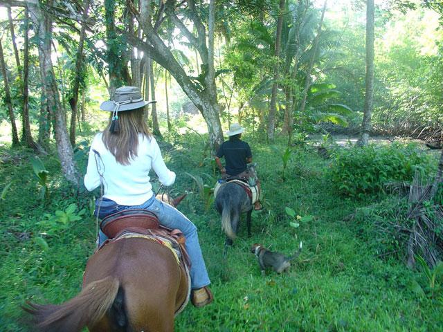 horseride lize gama