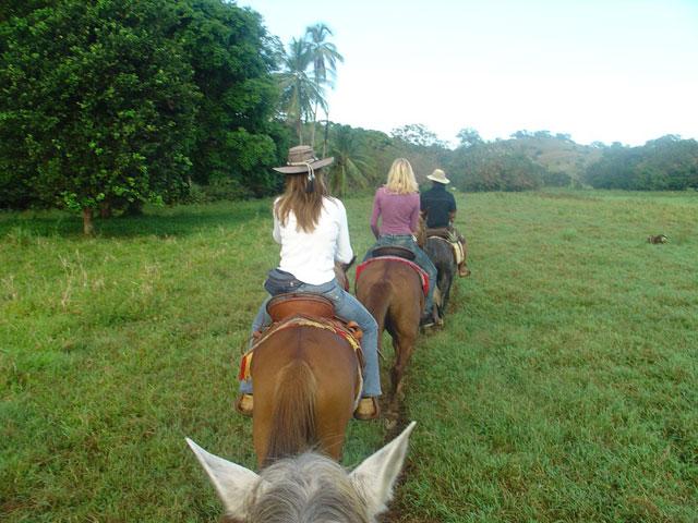 horseride row
