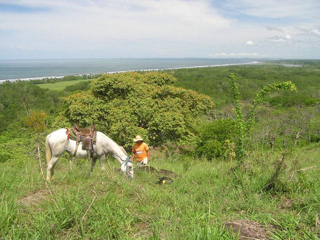 horseride seaview gama